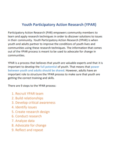 youth participatory action research