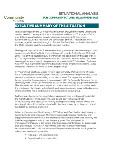 community executive situational analysis