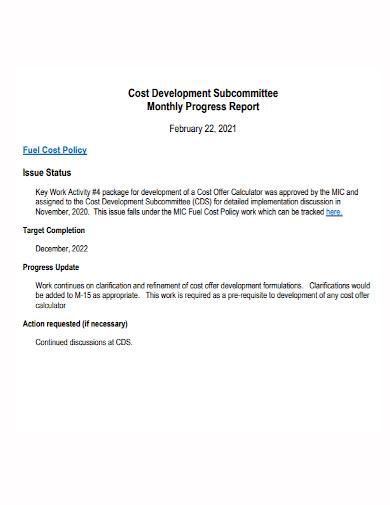 cost development monthly progress report