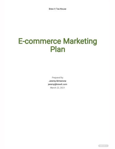 e commerce marketing plan template