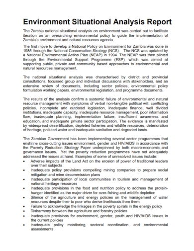 environmental situation analysis report