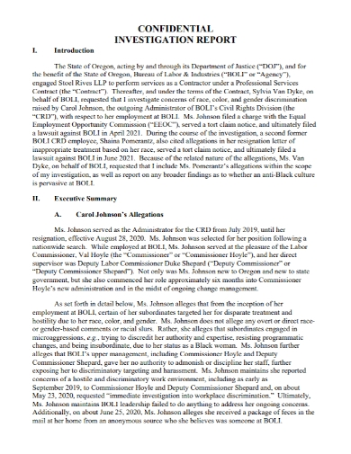 executive confidential investigation report