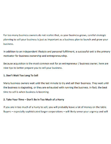 exit strategy business plan format