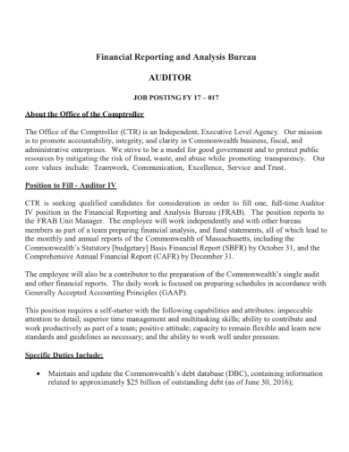 financial analysis auditor report
