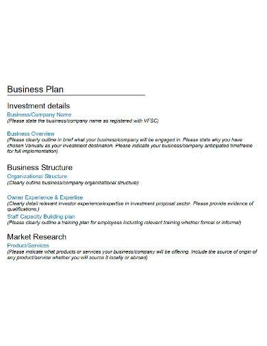 investment company business plan format