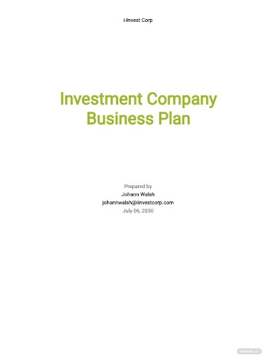 investment company business plan sample