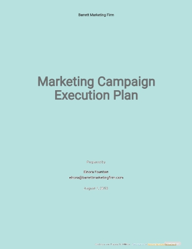 marketing campaign execution plan template
