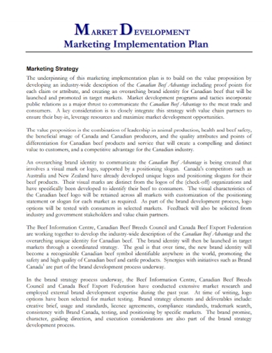 marketing development implementation plan