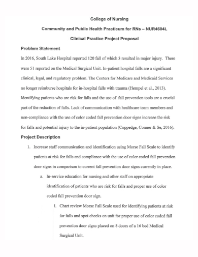 nursing clinical practice project proposal