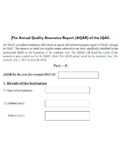 professional quality assurance report