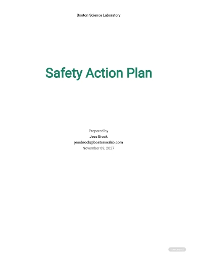 safety action plan template