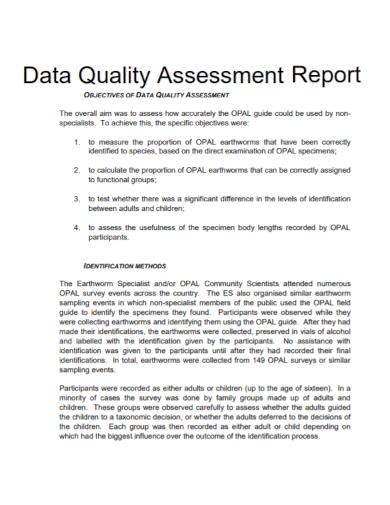 sample data quality assessment report