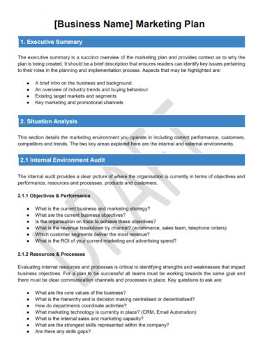 situation analysis business marketing plan