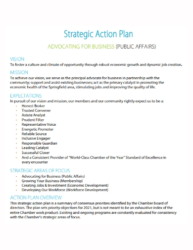 strategic advocating business action plan
