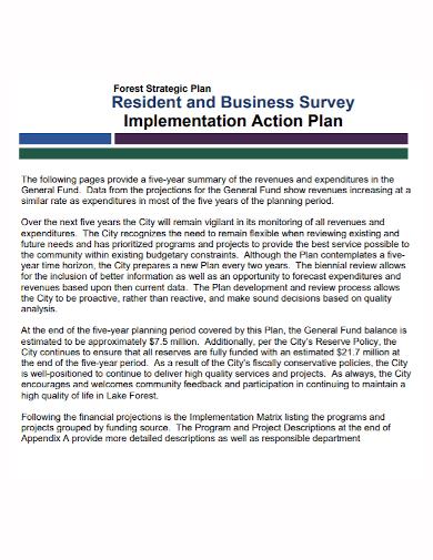 strategic business survey action plan