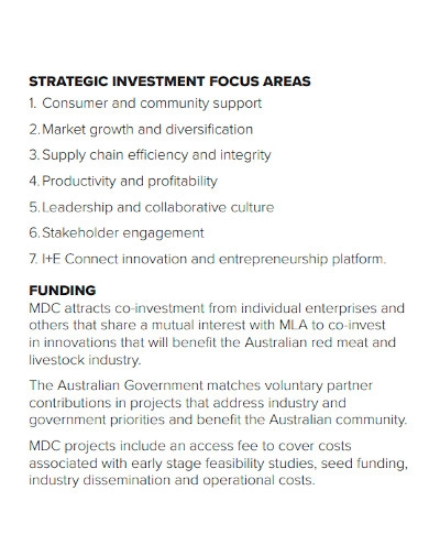 strategic investment company business plan