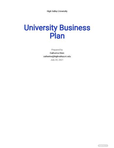 university business plan sample