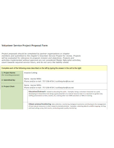 volunteer service project proposals