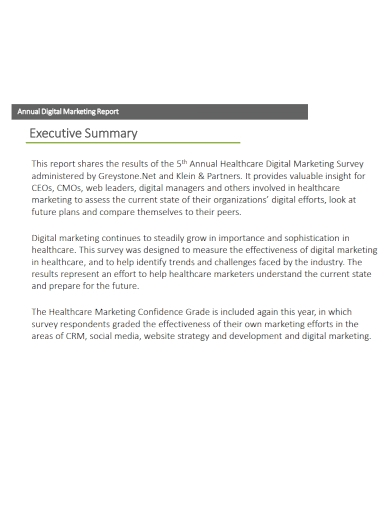 annual digital marketing executive summary