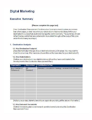 digital marketing analysis executive summary