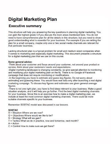 digital marketing plan executive summary