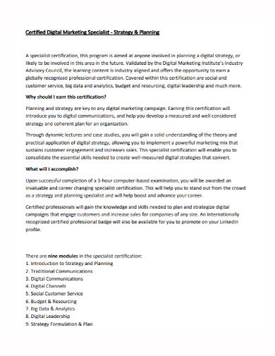 digital marketing specialist strategy plan
