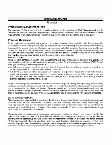 financial project risk management plan