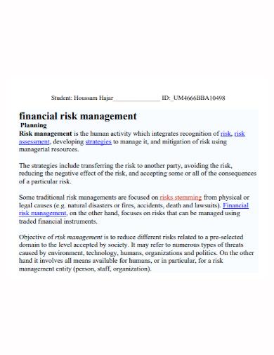 financial risk management plan