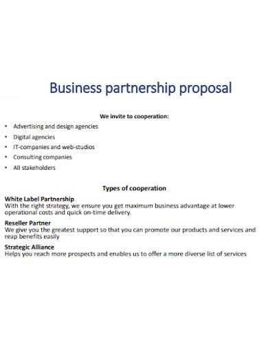 it business partnership proposal