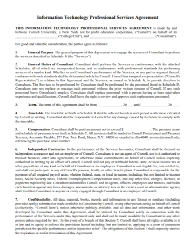 it professional service agreement