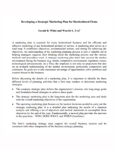 marketing development strategy plan