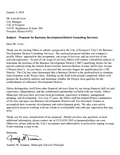 simple business consulting proposal