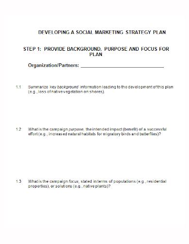 social media development strategy plan